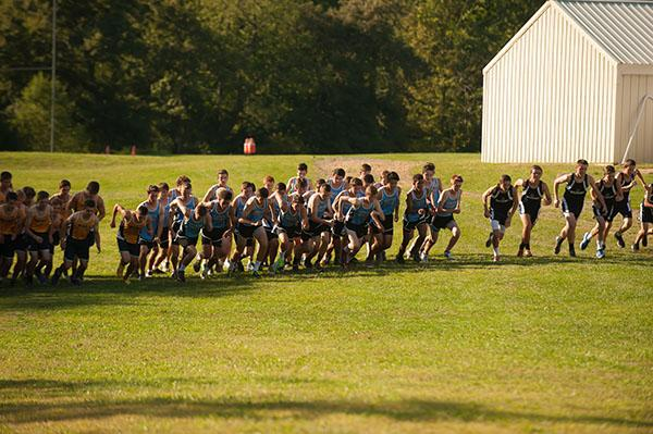 Seneca's Men's Cross Country Team Remains Undefeated Heading into WPIAL Finals