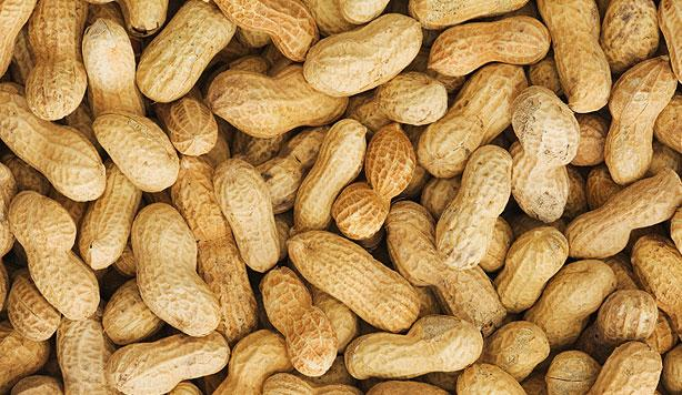 Skin Patch Increases Peanut Allergy Tolerance